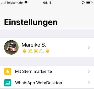 Ich liebe die Stern-Funktion auf WhatsApp